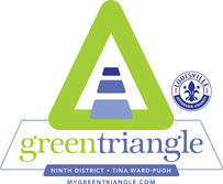 Green Triangle Logo