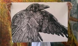 Photo of Raven Print by Gaia