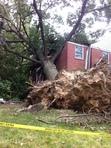Image of Derecho storm damage