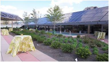 Picture of the Convention Center's Green Roof