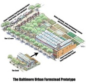 Drawing of Future Urban Farmstead
