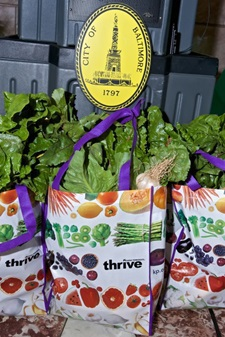 Image of Grocery bags of veggies for CSA members