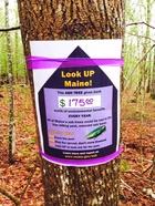 Ash Tree Awareness Tag