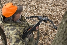 crossbow hunter afield in tree stand