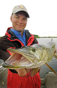 Angler holding a muskellunge