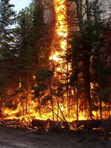 Help prevent wildfires, get a burn permit before you burn.