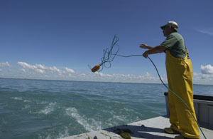 August brings new trawl survey to Lake Erie
