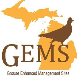 Nation's best bird hunting a Michigan treasure – GEMS help connect local business and hunters