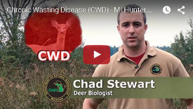 CWD Informational Video - Click to Play