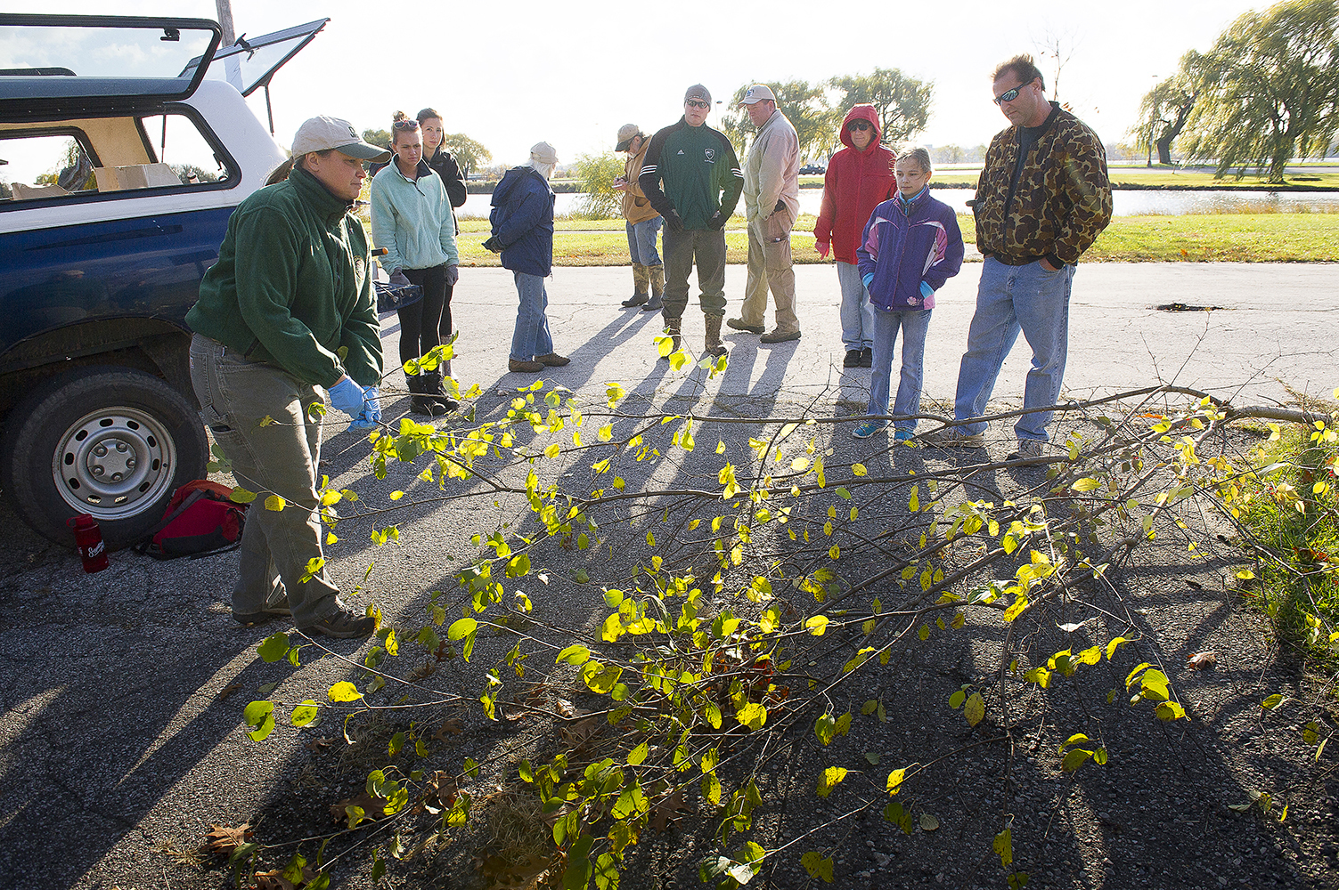 A DNR staffer shows volunteers how to identify invasive shrubs