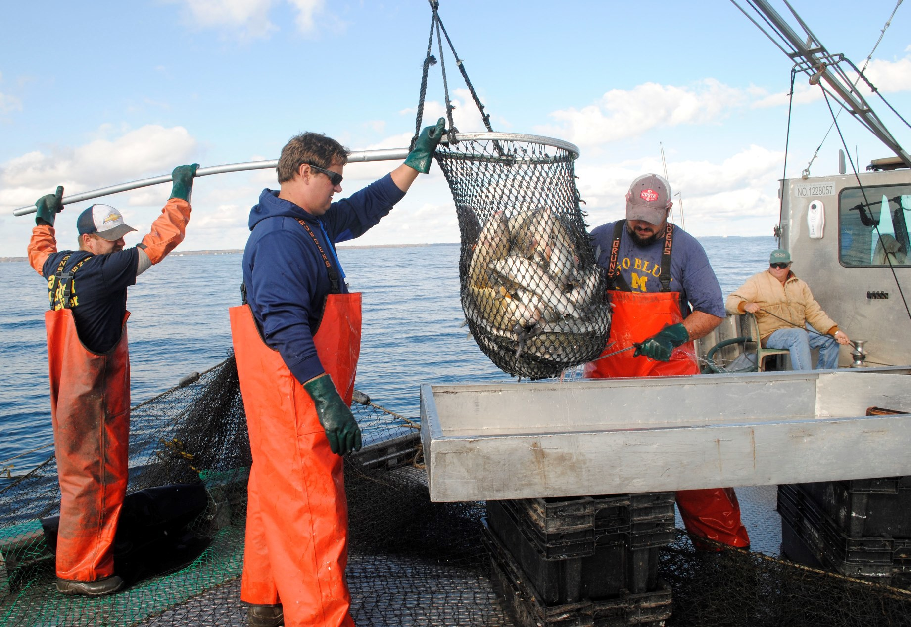 Thumb area lake huron commercial fishing experiment may for What is commercial fishing