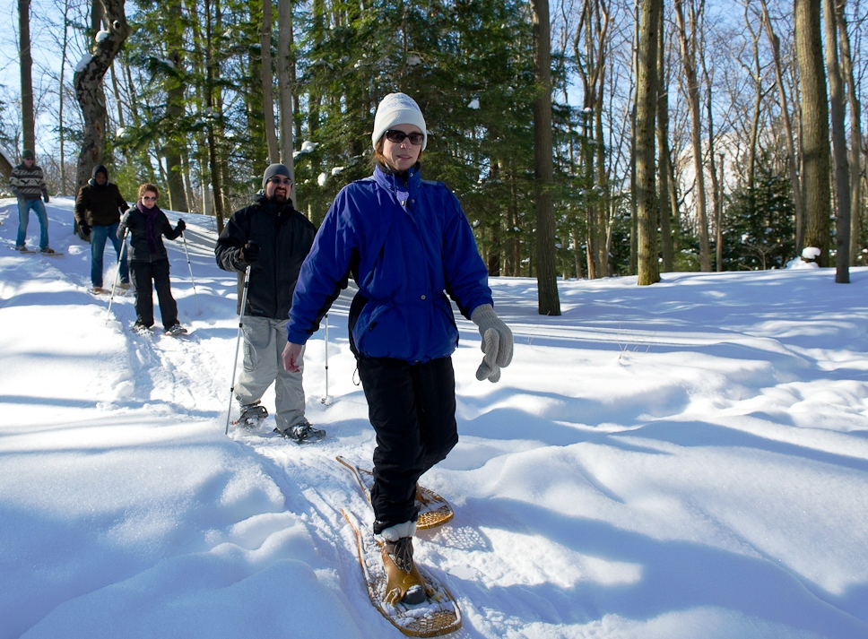 Several people shown snowshoeing under sunny skies in a winter woodland.