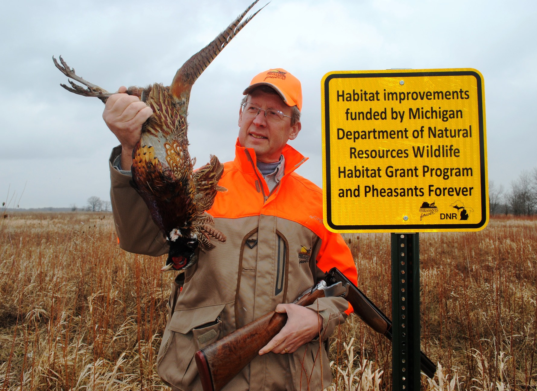 Dressed in hunting clothes, Bill Vander Zouwen, Michigan Region representative for Pheasants Forever, looks at a male pheasant he shot.
