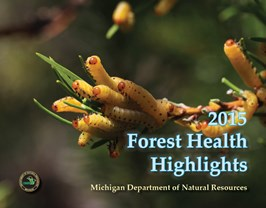 DNR releases update on health of Michigan's forest land