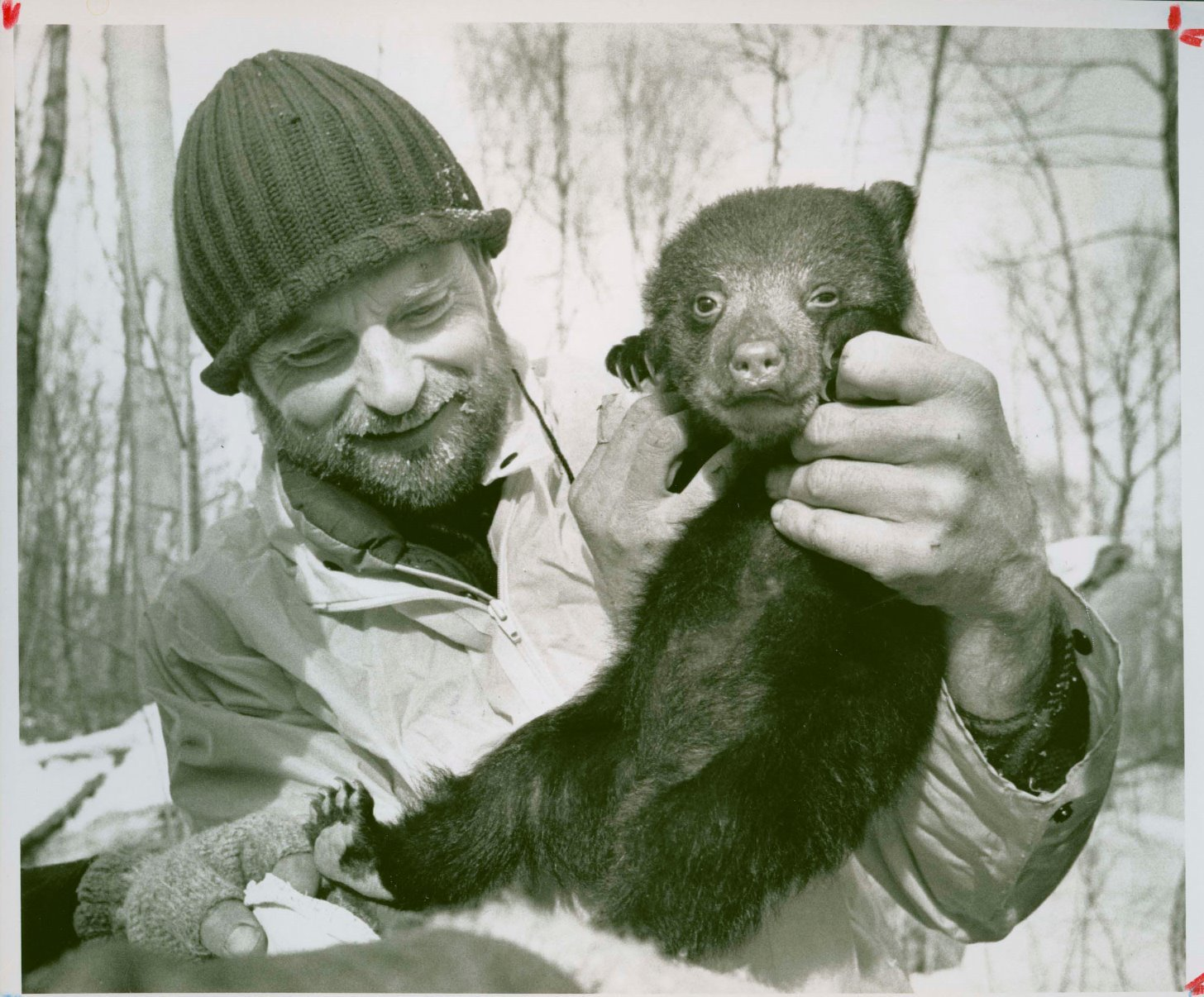In a black-and-white image, veterinarian Steve Schmitt holds a small black bear cub.
