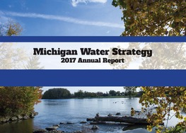 Water Strategy 2017 Annual Report Cover