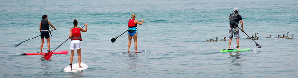 Paddleboarders on Detroit River Water Trail