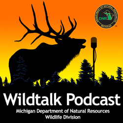 "The Michigan Department of Natural Resources' new ""Wildtalk"" podcast will keep you current on woods, water and wildlife."