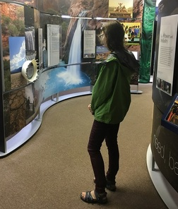 A young woman looking at the Water/Ways exhibit