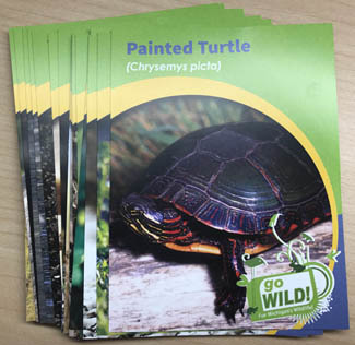 Critter cards help introduce young readers to Michigan wildlife species.