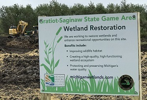 Many wetland restoration projects are making a difference at sites around Michigan, like this one at Gratiot-Saginaw State Game Area.