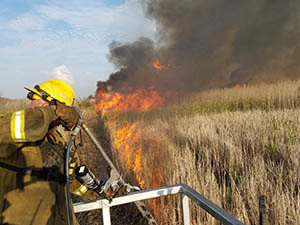 A prescribed burn to control phragmites is shown.
