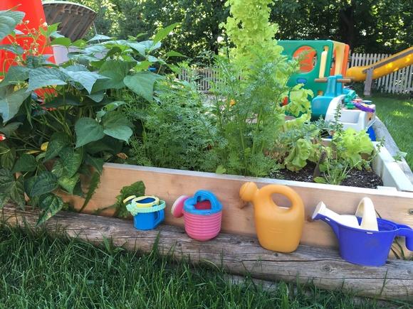 Childcare Garden Site