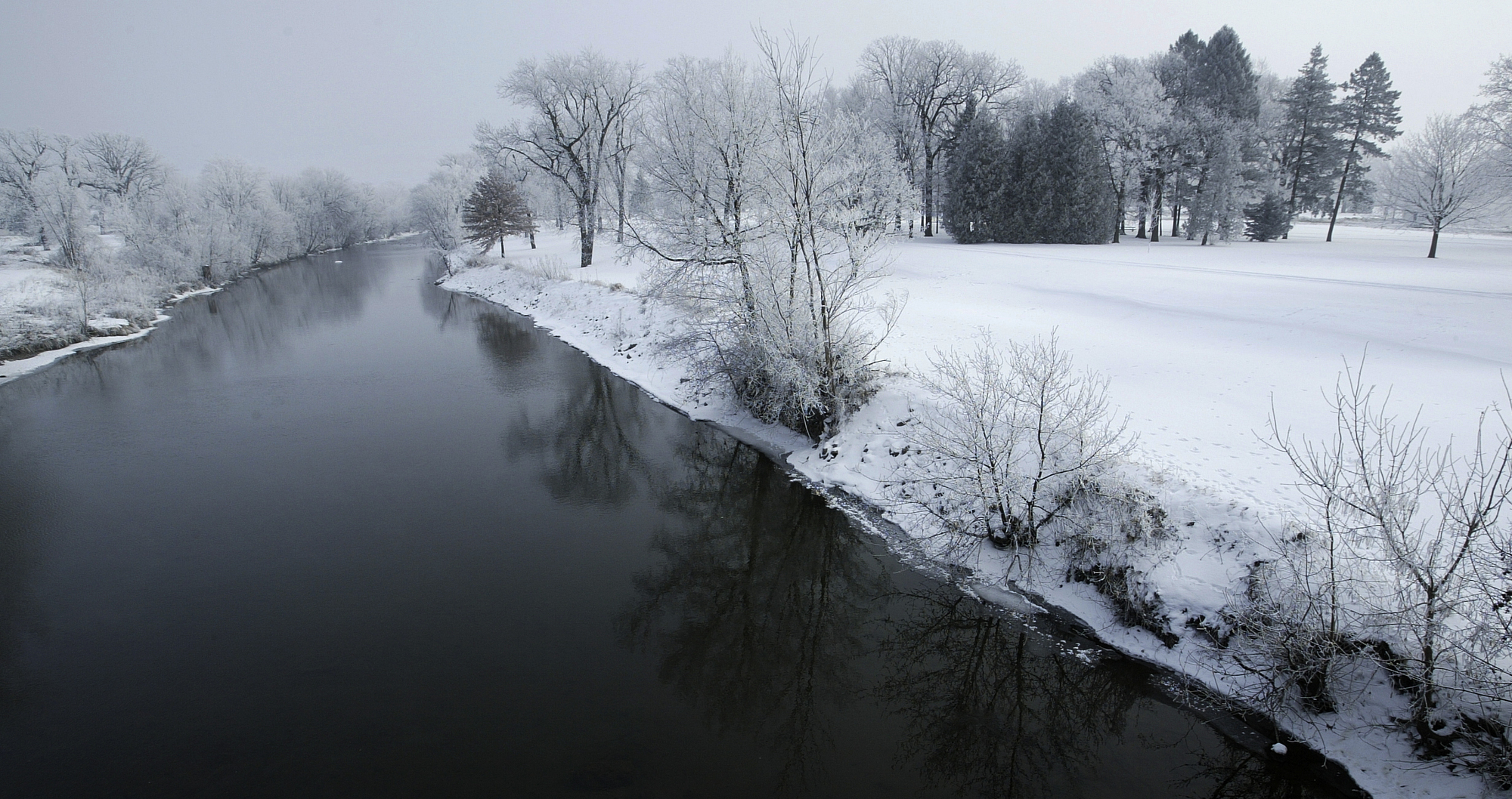 The Cedar River on an overcast winter day with snow-encrusted trees.  Photo taken by Nate Howard.