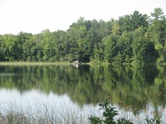 Beltrami County shoreland photo