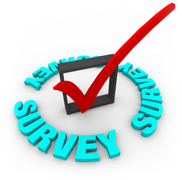 survey icon
