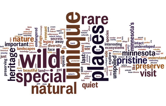 Wordle for SNA website survey