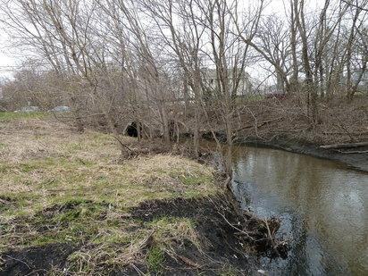 Erosion on Shingle Creek