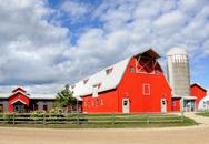 Barn at Gale Woods Farm