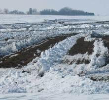 winter land app
