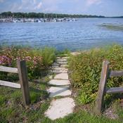 Restored shoreline