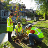 Duluth tree planting event