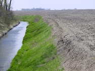 Drainage ditch in Yellow Medicine watershed