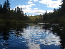 Report on condition of Minnesota rivers and streams