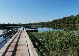 Rogers Lake