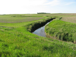 Conservation on Minnesota farmland