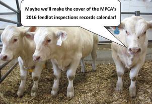 2016 feedlot calendar promo