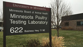 willmar poultry testing lab