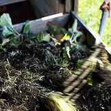 compost gardening