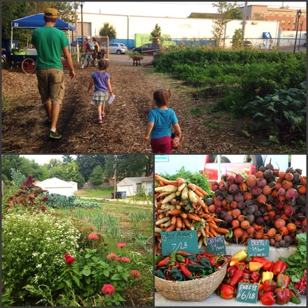 Homegrown Minneapolis Community Garden Collage