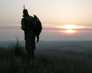 Silhouetted turkey hunter