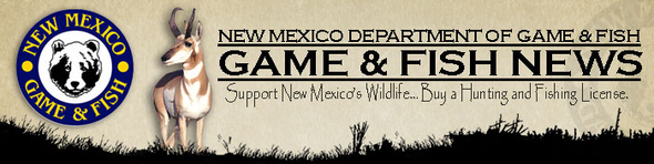 Late season archery elk licenses go on sale oct 29 for New mexico fishing license