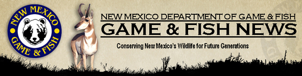 Plenty of youth elk hunting licenses for sale krtn for New mexico fishing license