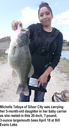 New mexico game and fish fishing report krtn enchanted for Nm fish stocking report