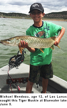 New mexico fishing and stocking reports for june 9 for Conchas lake fishing report