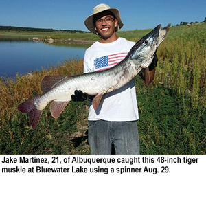 New mexico fishing and stocking reports for sept 1 for Conchas lake fishing report